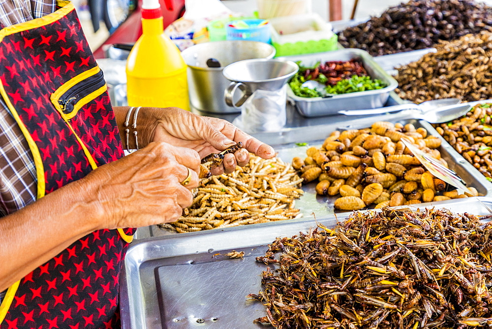 A market stall holder preparing an insect barbecue at Wat Chalong Temple in Phuket, Thialand, Southeast Asia, Asia.