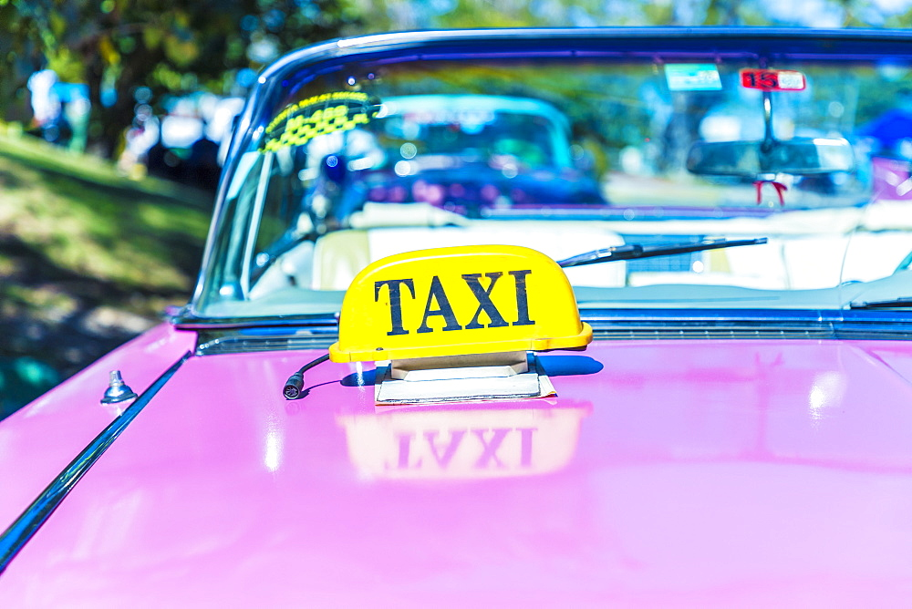 A taxi sign on a classic American car used as a taxi in Varadero, Cuba, West Indies, Caribbean, Central America - 1297-61