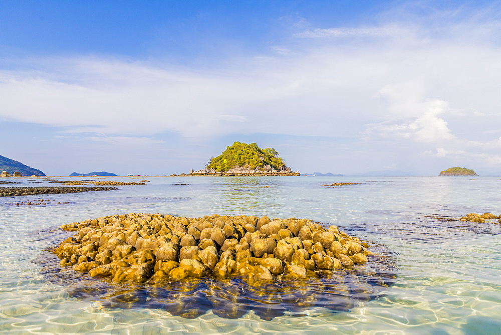 Exposed coral in Ko Lipe, in Tarutao National Marine Park, Thailand, Southeast Asia, Asia.