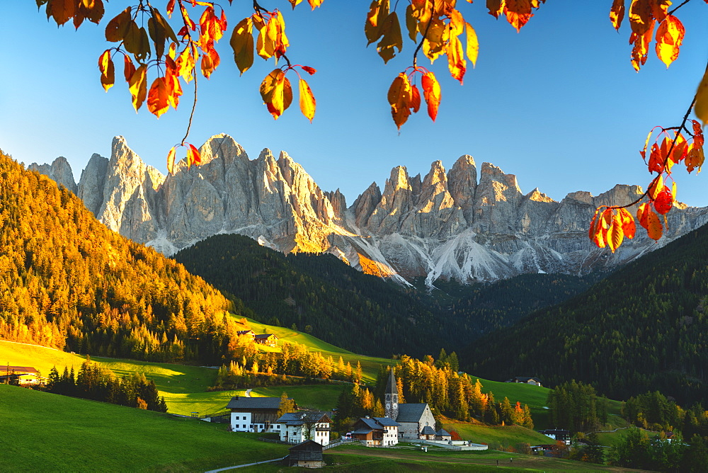Santa Maddalena and the Odle Group at sunset in autumn, Funes Valley (Val di Funes), Trentino Alto Adige-South Tyrol, Dolomites, Italy, Europe - 1299-100