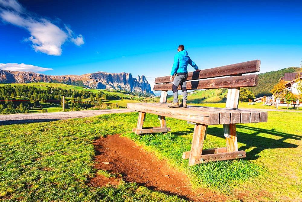 The characteristic Alpe di Siusi bench in Trentino Alto Adige, Bolzano province in Italy, Europe - 1299-127