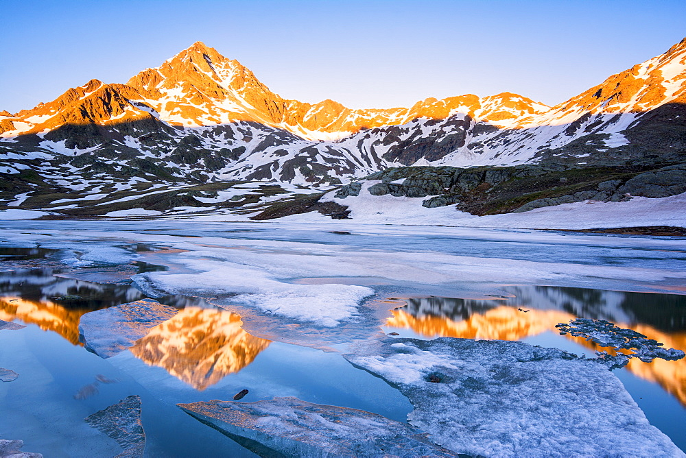 Tre Signori peak reflected in an alpine lake at thaw, Gavia Pass, Val Camonica, Stelvio National Park, Brescia Province, Lombardy, Italy, Europe - 1299-16