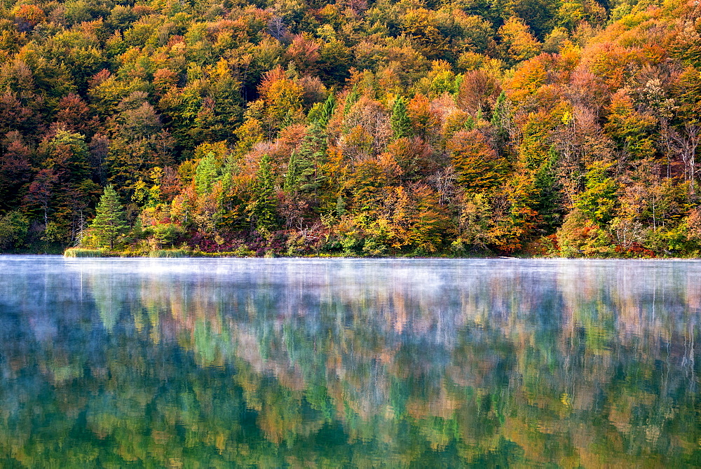 Details of autumn in Plitvice National Park, UNESCO World Heritage Site, Croatia, Europe
