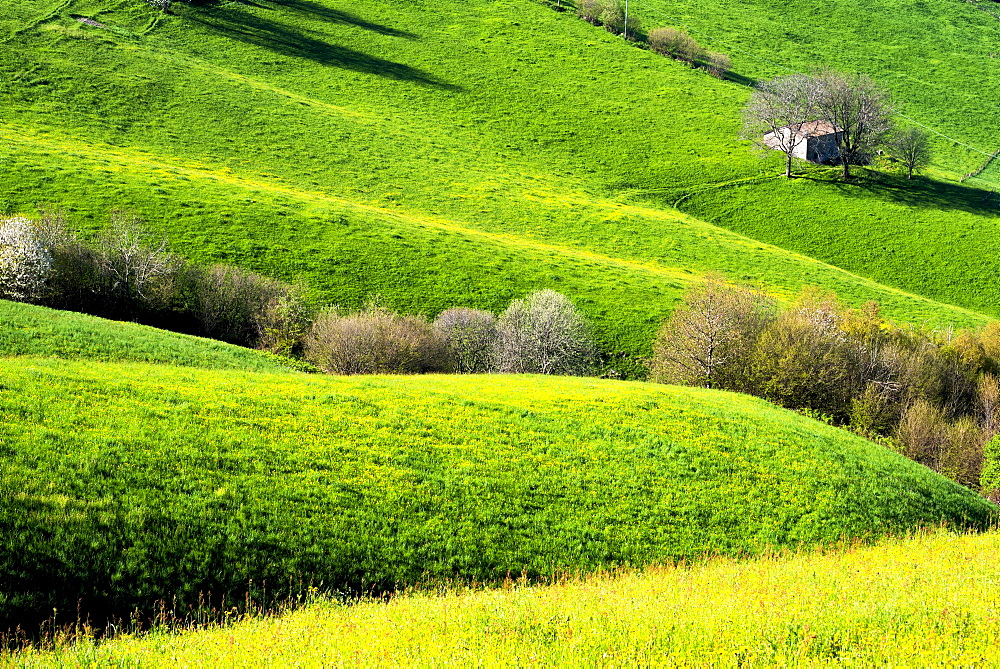 Hills of Bergamo in spring, Bergamo province, Lombardy district, Italy, Europe - 1299-3