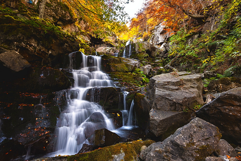 Autumn at the Dardagna waterfalls, Tosco Emiliano Apennines, Apuan Alps, Lizzano in Belvedere, Emilia Romagna, Italy, Europe - 1299-96
