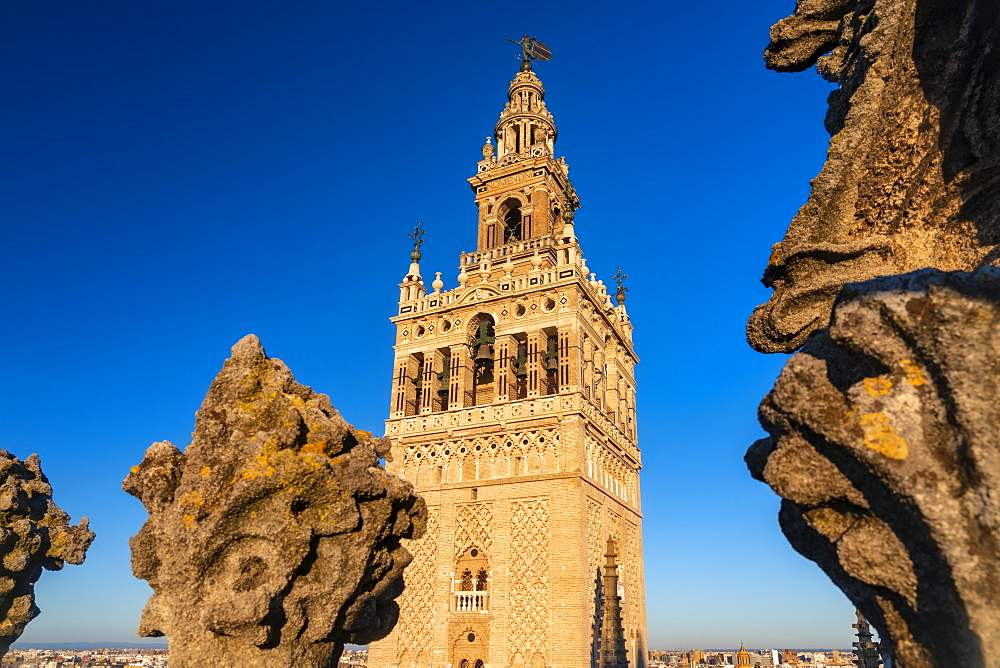 La Giralda, the bell tower of the Cathedral of Seville from the rooftop of the Cathedral, UNESCO World Heritage Site, Seville, Andalucia, Spain, Europe