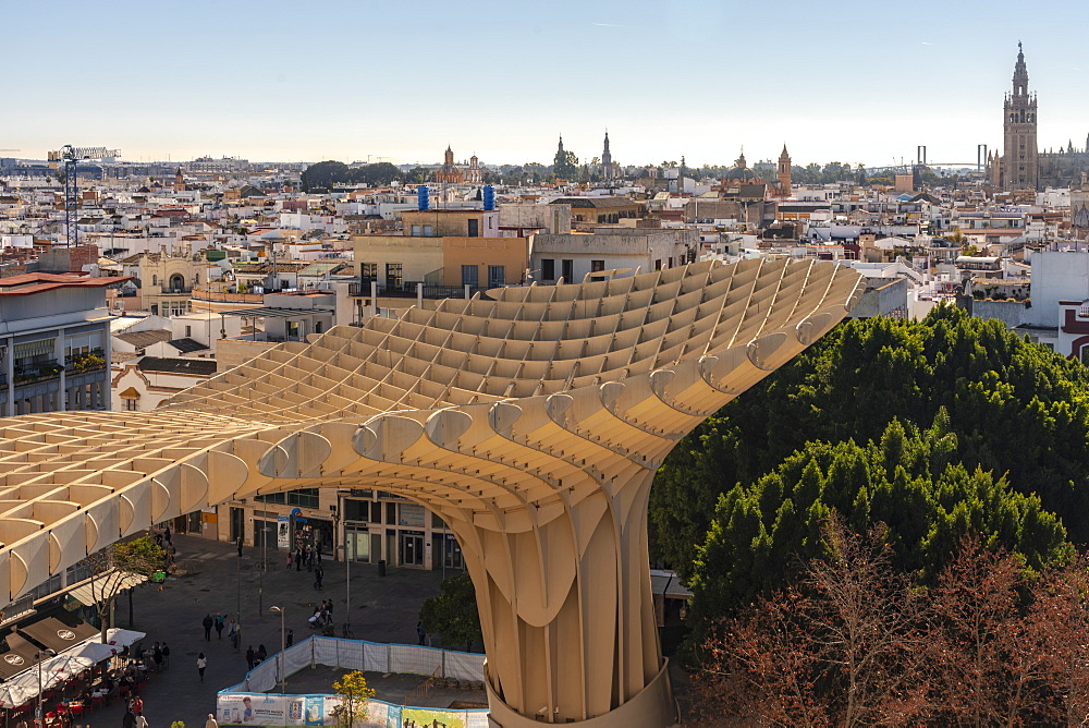 Setas de Sevilla, Metropol Parasol a huge wooden modern architecture structure with Seville historic buildings in the background, Seville, Andalucia, Spain, Europe