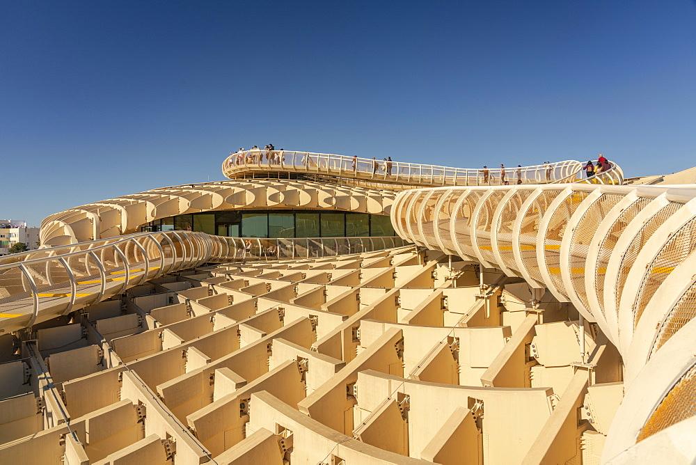 Setas de Sevilla, Metropol Parasol a huge wooden modern architecture structure, Seville, Andalucia, Spain, Europe