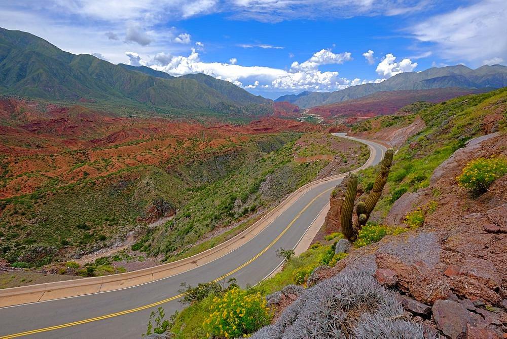 The famous Road Ruta 40 trough the canyon of the Cuesta de Miranda, La Rioja, Argentina, South America - 1301-33