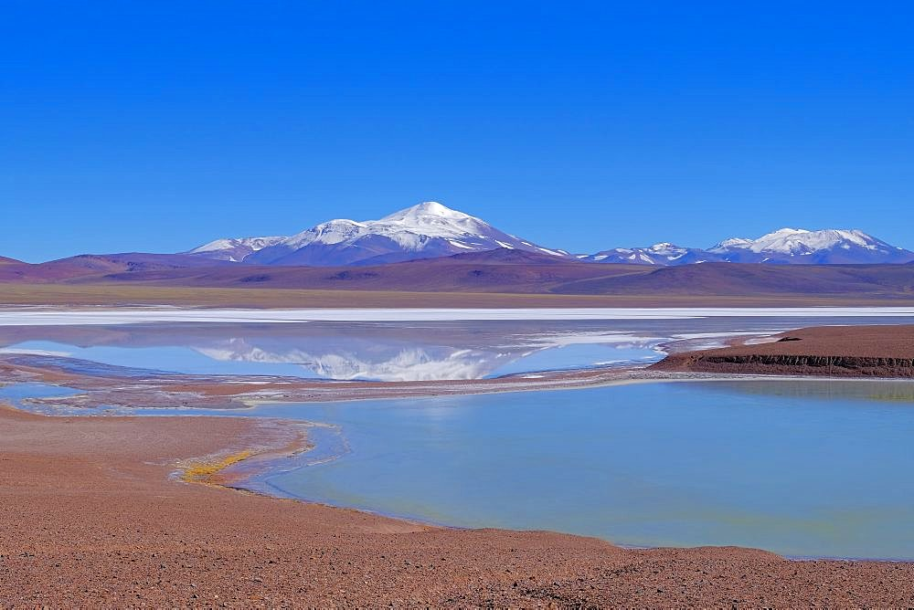 Lagoon Laguna Brava and andean mountains near Paso Pircas Negras mountain pass, Argentina to Chile, La Rioja, South America