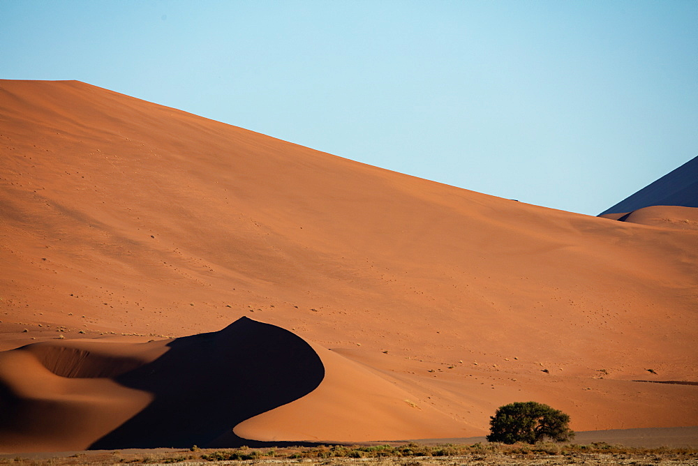 Sossusvlei National Park, sunset at Dune along the main highway to Deadvlei, Namibia, Africa - 1304-38