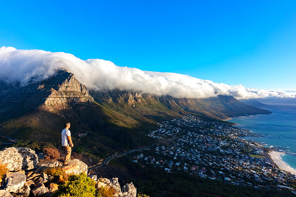 Lions Head, Cape Town, South Africa, Africa - 1304-85