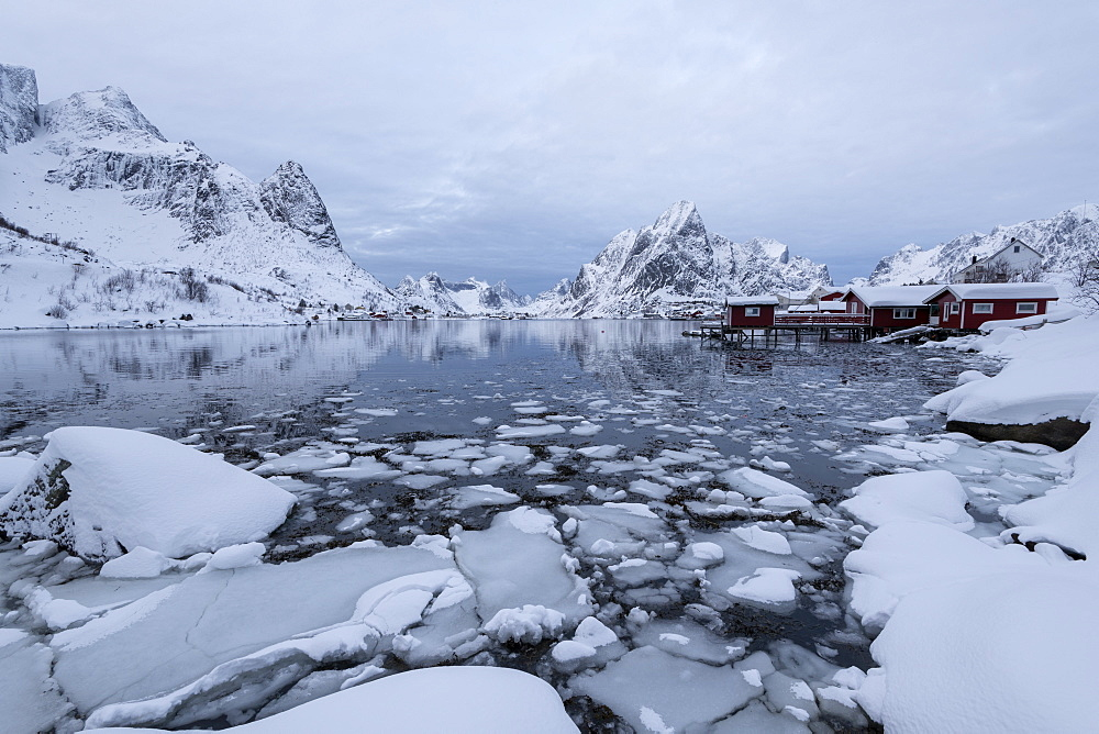 Reine in winter, Moskenes, in the Lofoten Islands, Arctic, Norway, Europe