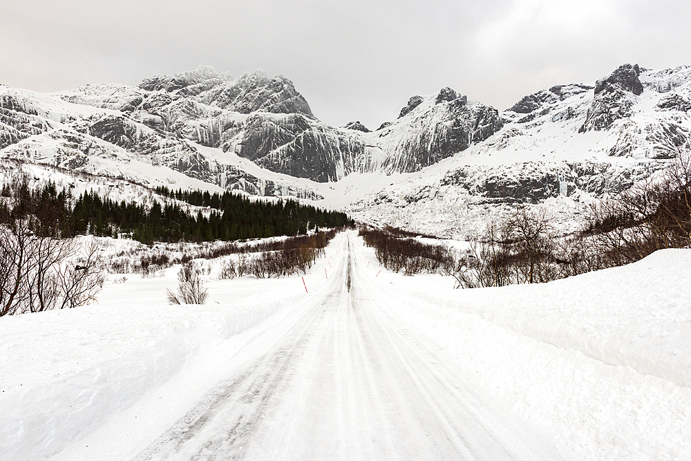 Snow covered road in arctic winter conditions, Lofoten, Nordland, Arctic, Norway, Europe