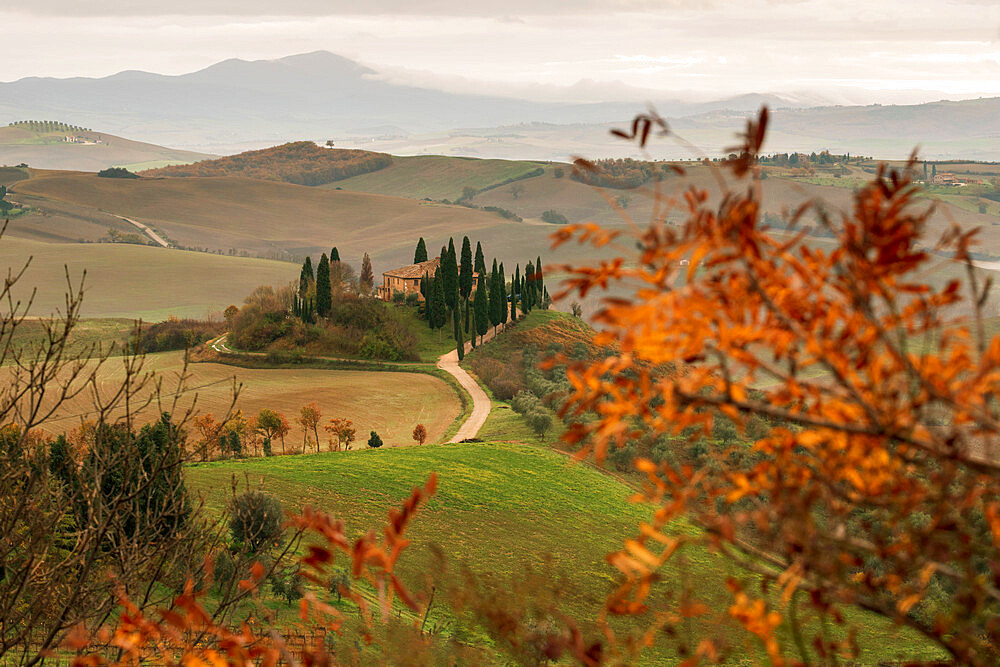 Podere Belvedere and Tuscan countryside at dawn near San Quirico d'Orcia, Tuscany, Italy, Europe - 1306-691