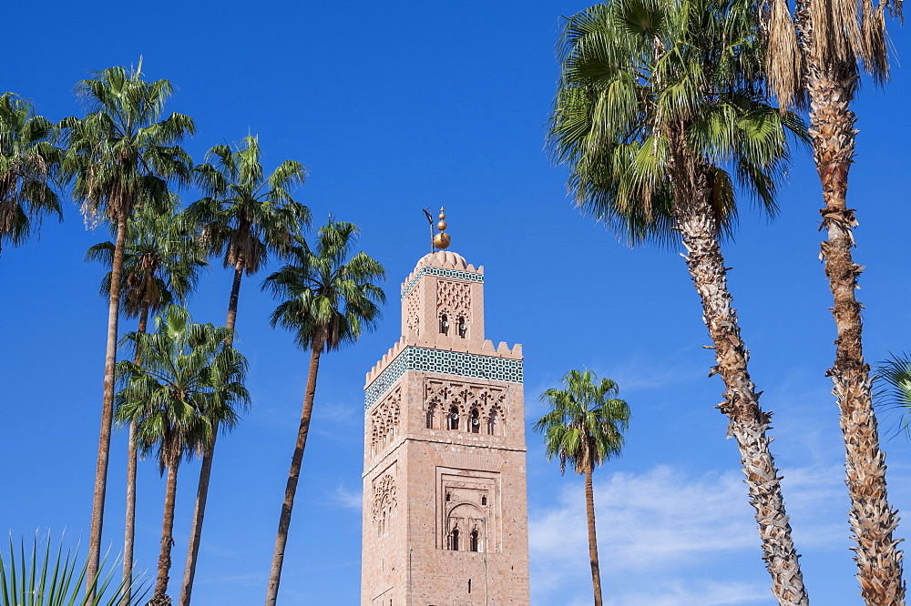Koutoubia Mosque with palm trees, Marrakech (Marrakesh), Morocco, North Africa, Africa