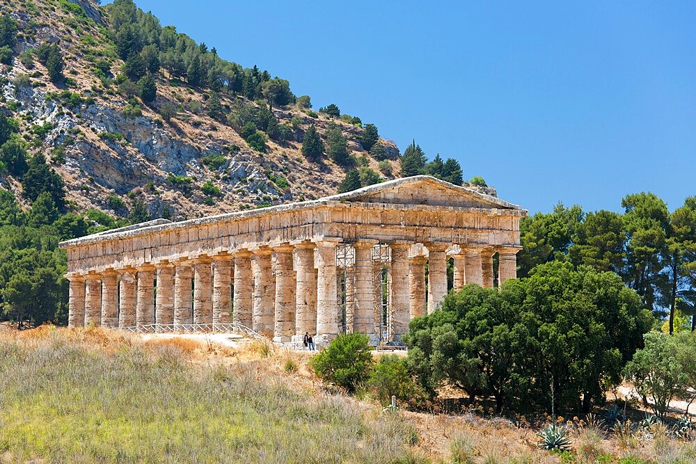 Well-preserved remains of the Doric temple at the ancient Greek city of Segesta, Calatafimi, Trapani, Sicily, Italy, Mediterranean, Europe - 1310-178