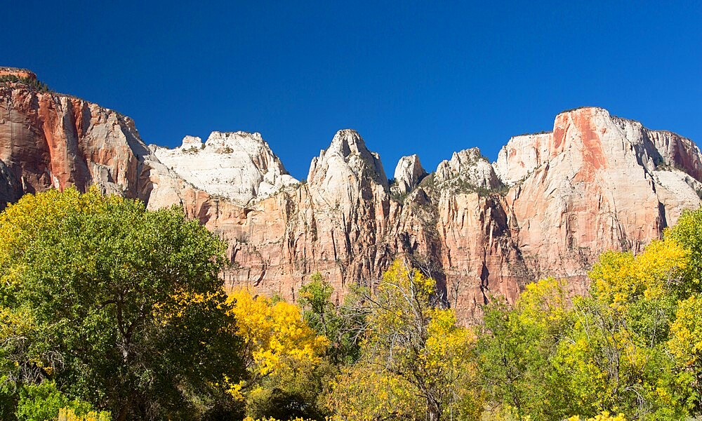 View from the Pa'rus Trail across woodland to the Towers of the Virgin, autumn, Zion National Park, Utah, United States of America, North America - 1310-210