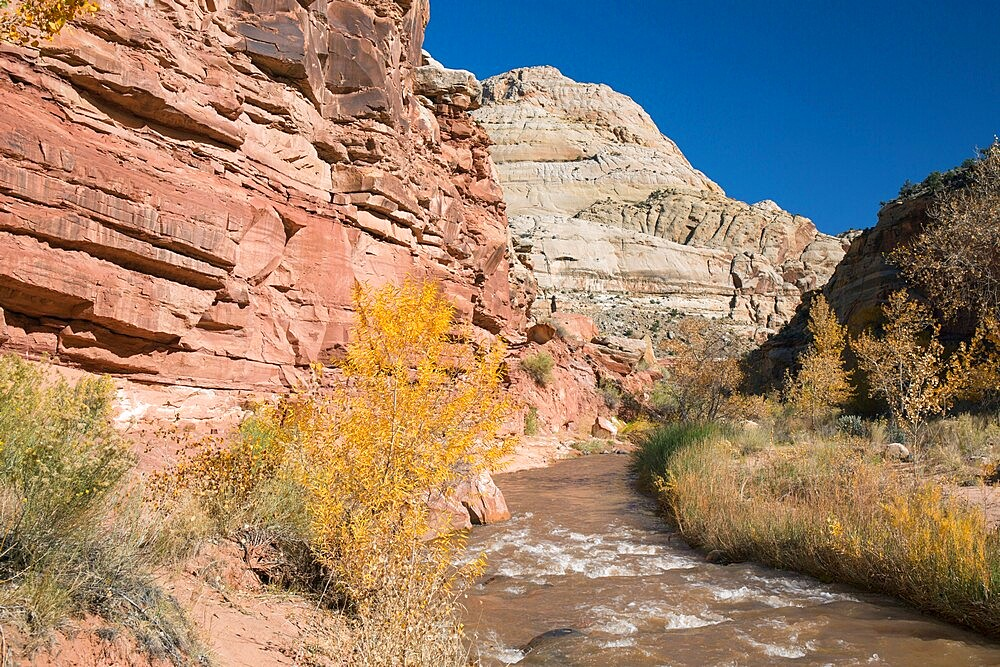 View along the Fremont River to Capitol Dome from the Hickman Bridge Trail, Fruita, Capitol Reef National Park, Utah, USA - 1310-240