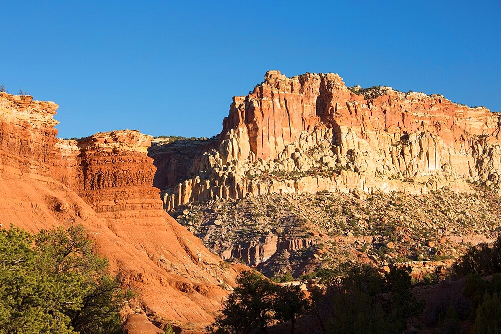 Sandstone cliffs of the Waterpocket Fold towering above Scenic Drive, sunset, Fruita, Capitol Reef National Park, Utah, USA - 1310-251