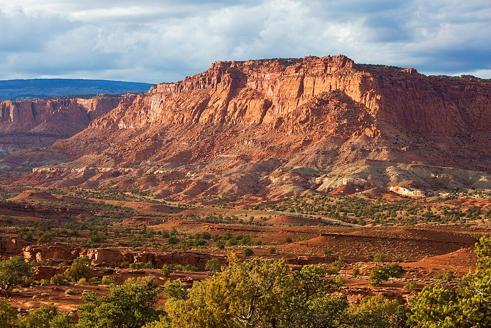 View from Panorama Point across valley to rugged cliffs of the Waterpocket Fold, sunset, Capitol Reef National Park, Utah, USA - 1310-252