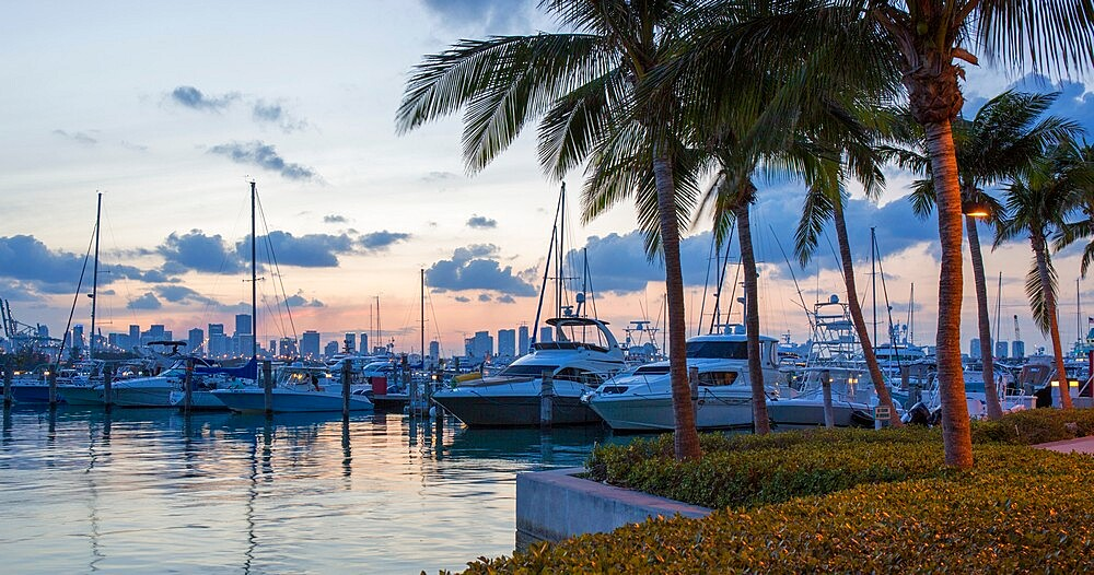 Panoramic view across marina from South Pointe Park, dusk, Downtown Miami in background, South Beach, Miami Beach, Florida, USA - 1310-273