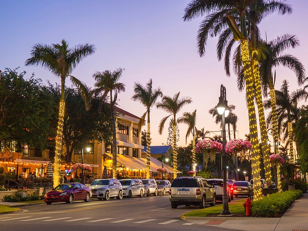 View along palm-lined 13th Avenue South in the heart of the city's premier dining district, dusk, Naples, Florida, USA - 1310-291