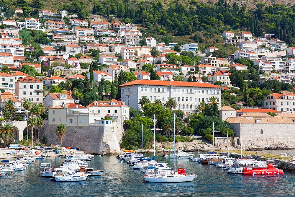 View over the Old Harbour, Stara Luka, houses clinging to steep hillside, Dubrovnik, Dubrovnik-Neretva, Dalmatia, Croatia