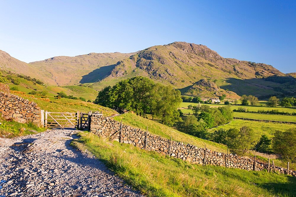 View along track towards Wrynose Fell, early morning, Little Langdale, Lake District National Park, UNESCO World Heritage Site, Cumbria, England, United Kingdom, Europe