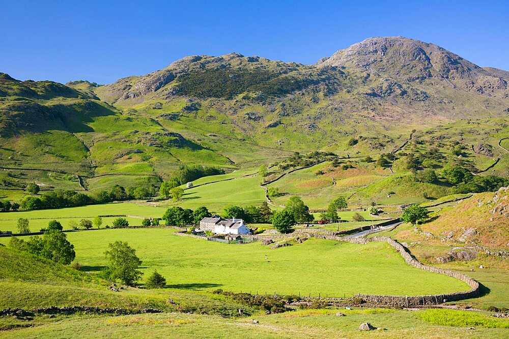 View across valley floor to Fell Foot Farm and Wetherlam, Little Langdale, Lake District National Park, UNESCO World Heritage Site, Cumbria, England, United Kingdom, Europe