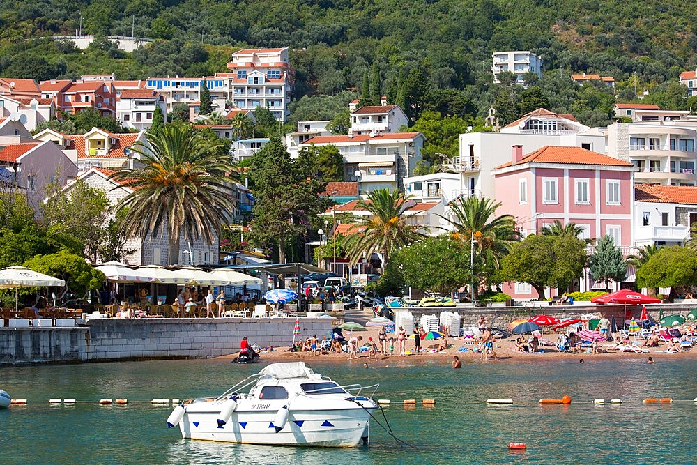 View from harbour to the town beach and palm-lined seafront promenade, Petrovac, Budva, Montenegro, Europe