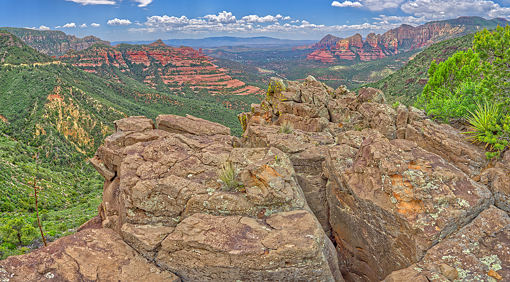 The Craggy Cliffs overlooking Casner Canyon north of Sedona from near the Schnebly Hill Vista, Arizona, United States of America, North America - 1311-113