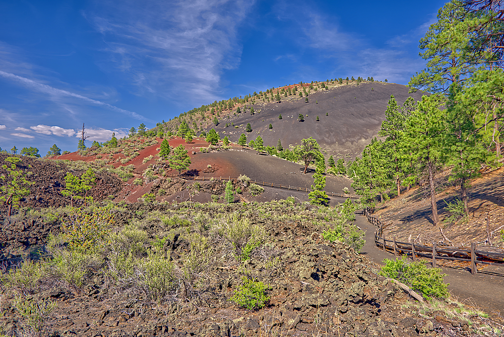 View from the Lower Lava Trail near Sunset Crater Volcano, north of Flagtaff, Arizona, United States of America, North America - 1311-119