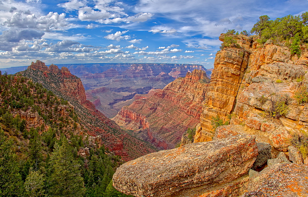 Grand Canyon view just below the summit of Buggeln Hill on the South Rim, Grand Canyon National Park, UNESCO World Heritage Site, Arizona, United States of America, North America