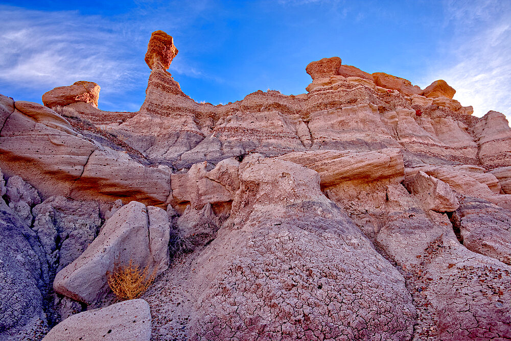 A Hoodoo of expansive clay called Bentonite in the Jasper Forest of Petrified Forest National Park, Arizona, United States of America, North America