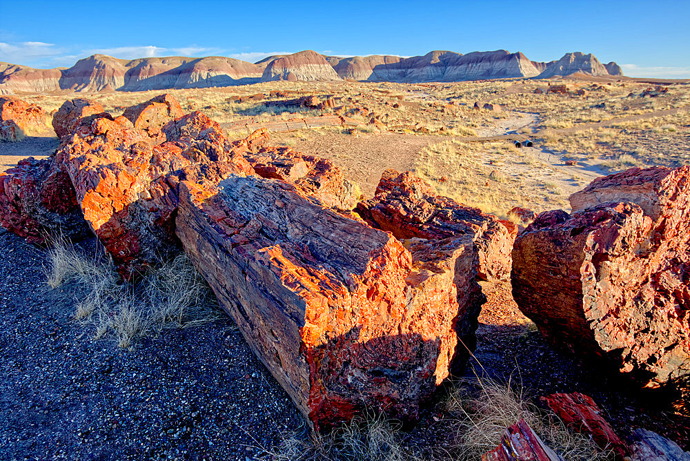View of the Petrified Forest National Park from the Long Logs Trail on the south end of the park, Arizona, United States of America, North America