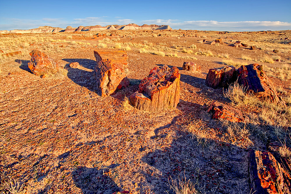 View of the Petrified Forest National Park from the Long Logs Trail on the south end of the park, Arizona, United States of America, North America - 1311-205