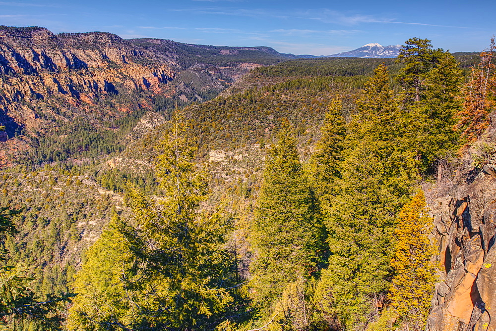 View of San Francisco Peaks from a cliff at the end of the Telephone Trail north of Sedona with Oak Creek Canyon on the left, Arizona, United States of America, North America