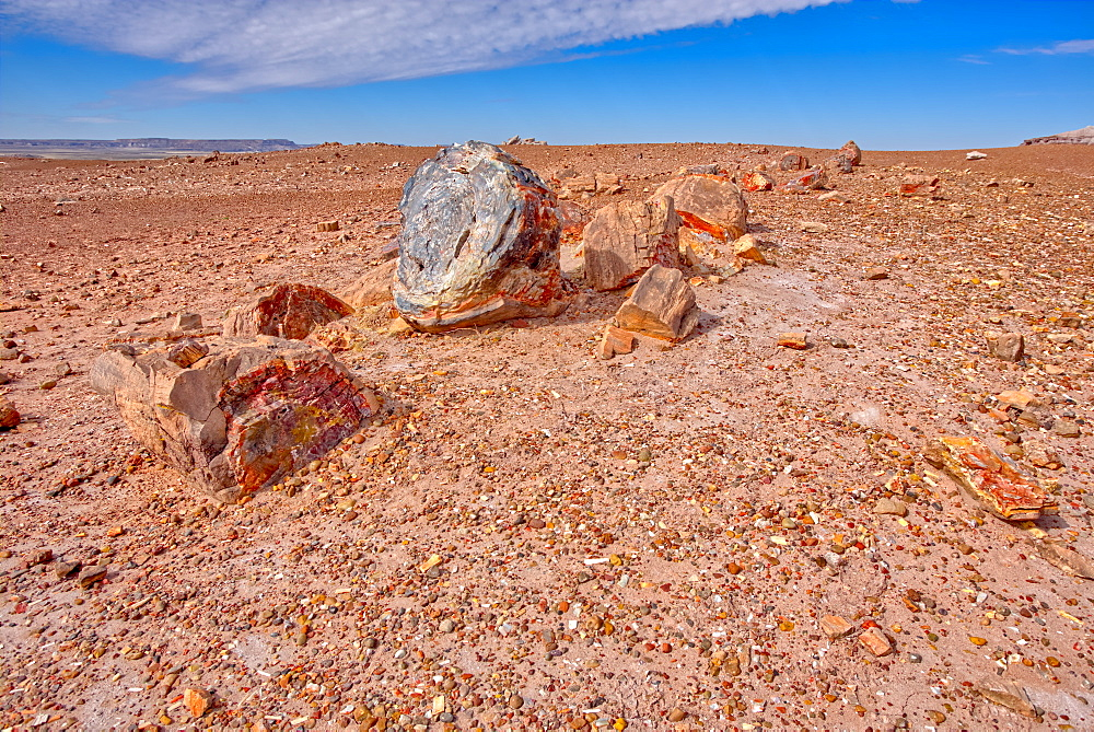 A shattered petrified log in a desolate area of Petrified Forest National Park, Arizona, United States of America, North America