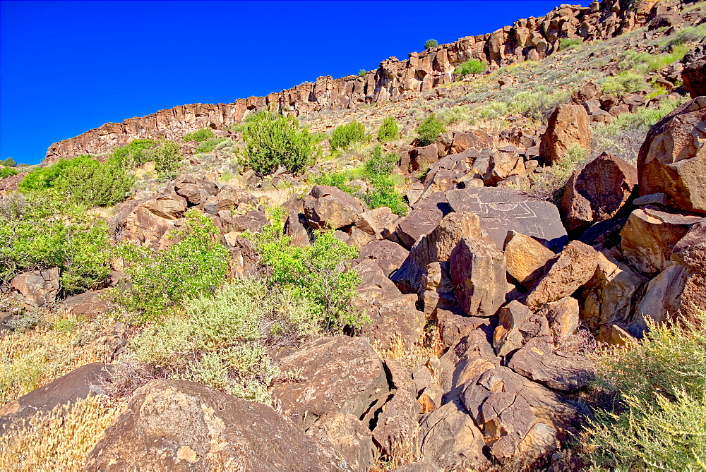 Petroglyph covered boulders on a slope in the Upper Verde River Wildlife Area in Paulden, Arizona, United States of America, North America