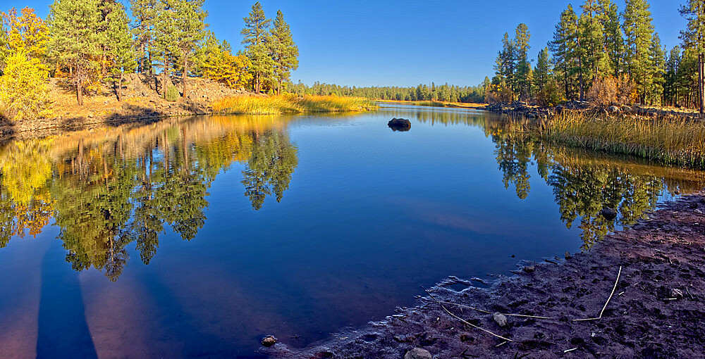 White Horse Lake in the Kaibab National Forest of northern Arizona viewed from its northwest lagoon, Arizona, United States of America, North America - 1311-256