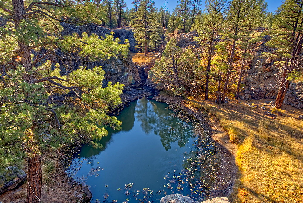 One of several natural ponds near Sycamore Falls known as the Pomeroy Tanks, Kaibab National Forest near Williams, Arizona, United States of America, North America - 1311-259