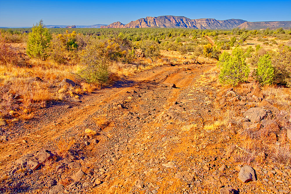 Rough road leading to the south rim of Rattlesnake Canyon southeast of Sedona in the Wet Beaver Wilderness of Arizona. - 1311-269