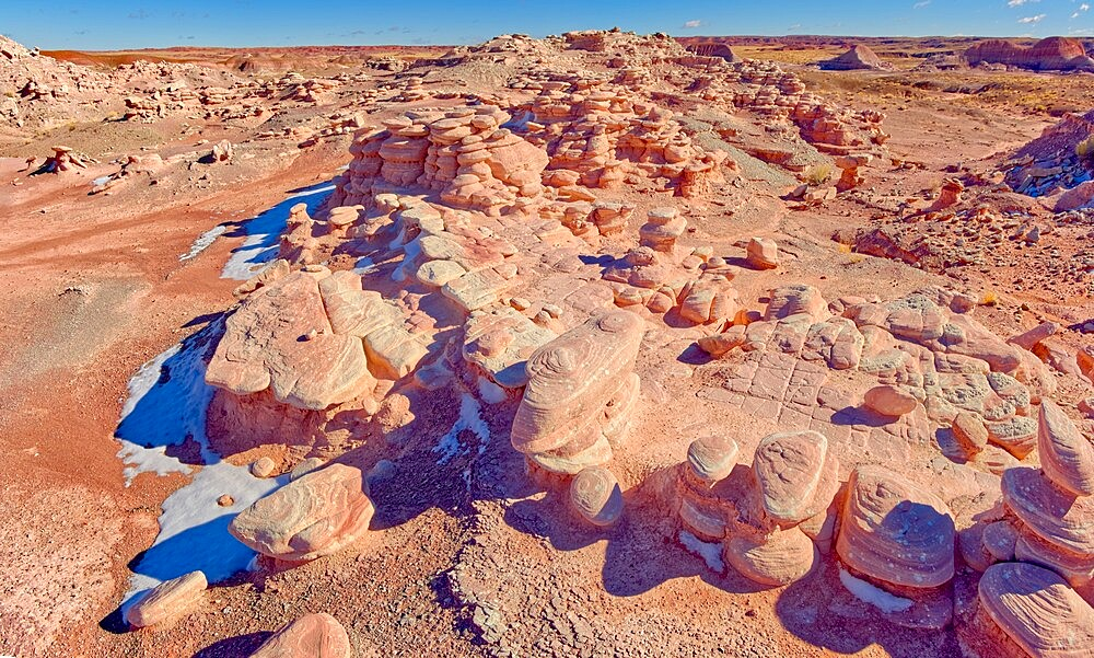 A section of Petrified Forest National Park called Angel Garden, northwest of the Onyx Bridge, Arizona, United States of America, North America - 1311-295