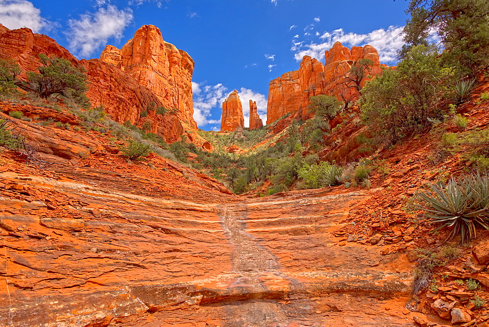 Cathedral Rock in Sedona viewed from a hidden trail on the west side of the rock, Sedona, Arizona, United States of America, North America