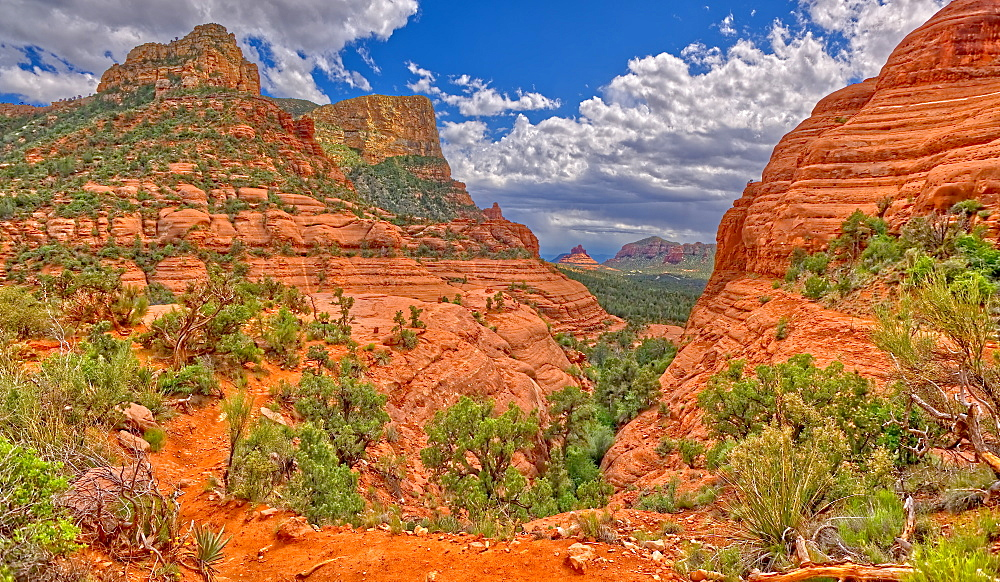 View of Chicken Point from the end of the High On The Hog Trail in Sedona, Arizona, United States of America, North America - 1311-95