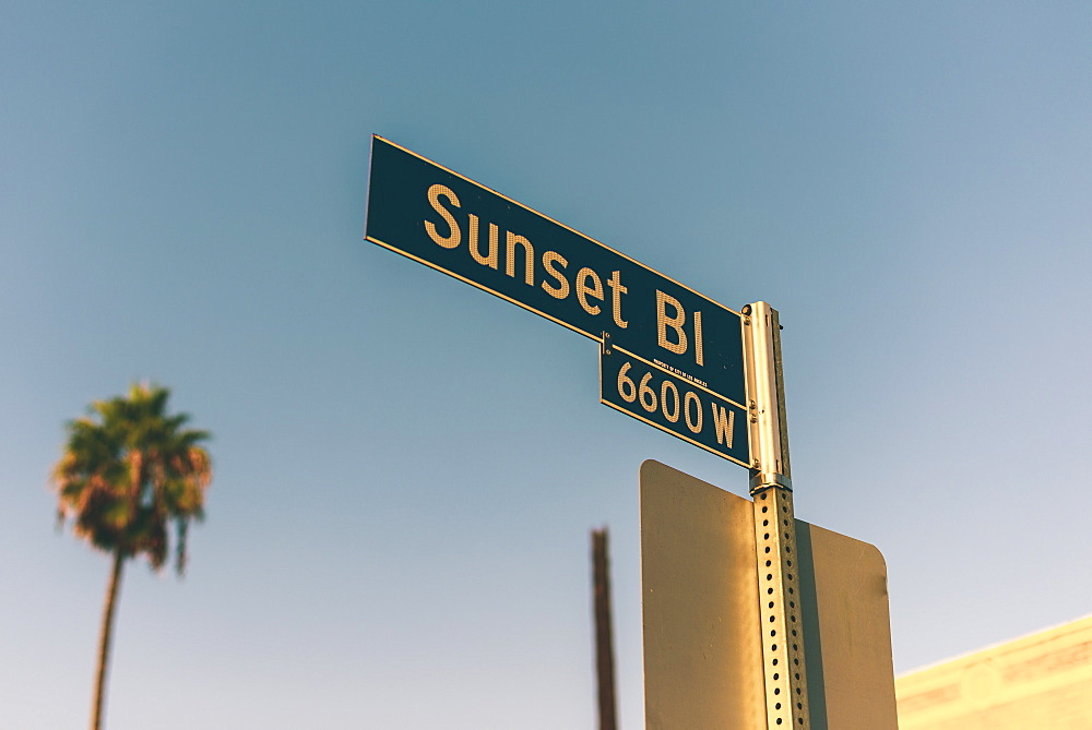 A close up of a road sign pointing to Sunset Blvd in Los Angeles - 1312-9