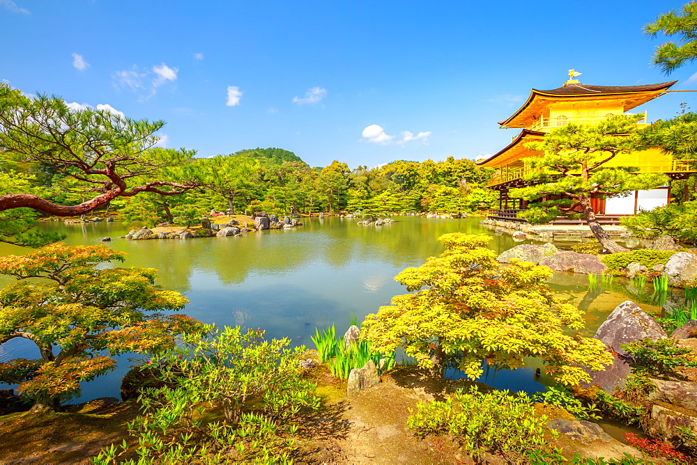 Kinkaku-ji (Golden Pavilion) (Rokuon-ji), Zen Buddhist temple, reflected in the lake surrounded by a scenic park, UNESCO World Heritage Site, Kyoto, Japan, Asia