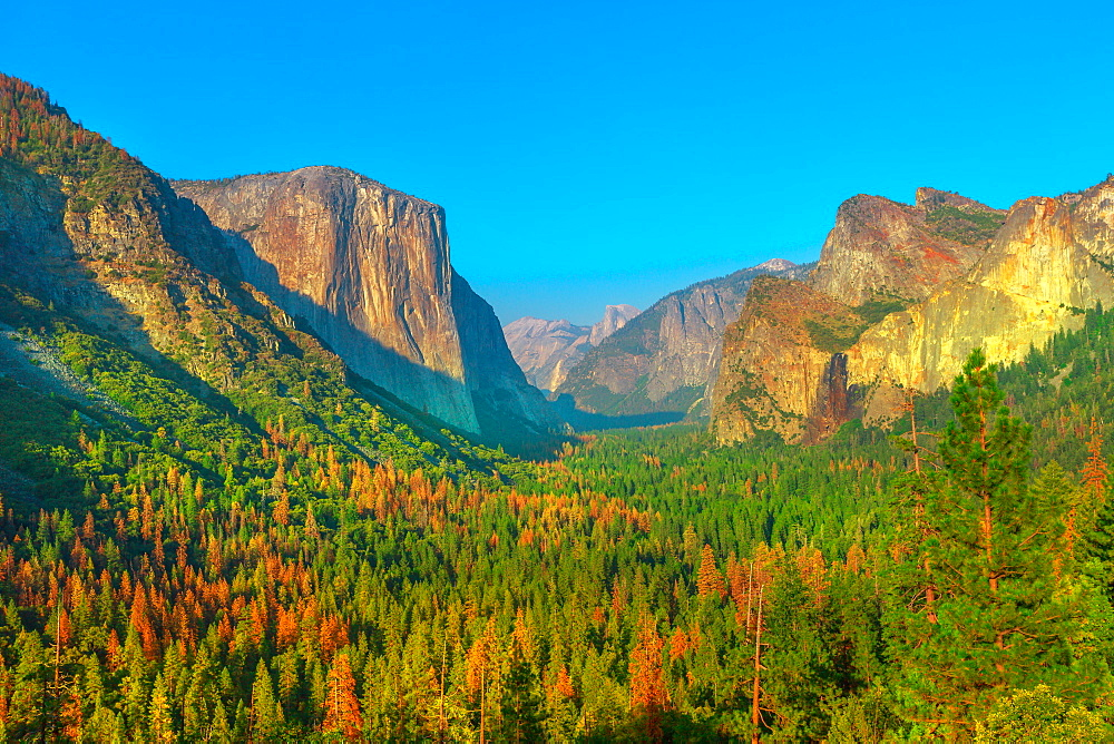 Tunnel View overlook in Yosemite National Park, El Capitan and Half Dome overlook, California, United States.
