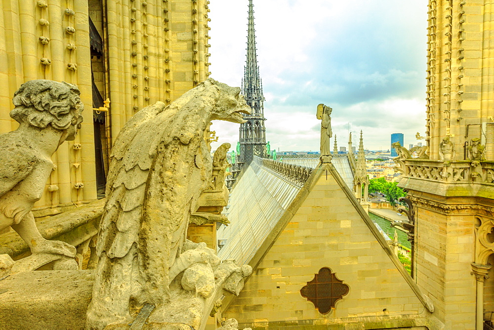 The gargoyles of Notre Dame Cathedral (Our Lady of Paris) and aerial view over the Paris skyline, Paris, France, Europe